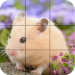Puzzle – Cute Hamsters 1.25 APK MODs Unlimited Money Hack Download for android