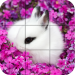 Puzzle – Cute bunnies 1.27 APK MODs Unlimited Money Hack Download for android