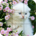 Puzzle – kittens 1.26 APK MODs Unlimited Money Hack Download for android