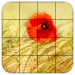Tile Puzzles Fields 1.40.fi APK MODs Unlimited Money Hack Download for android