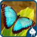 Butterfly Jigsaw Puzzles 1.9.0 APK MODs Unlimited Money Hack Download for android