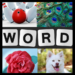 Word Picture – IQ Word Brain Games Free for Adults 1.3.4 APK MODs Unlimited Money Hack Download for android